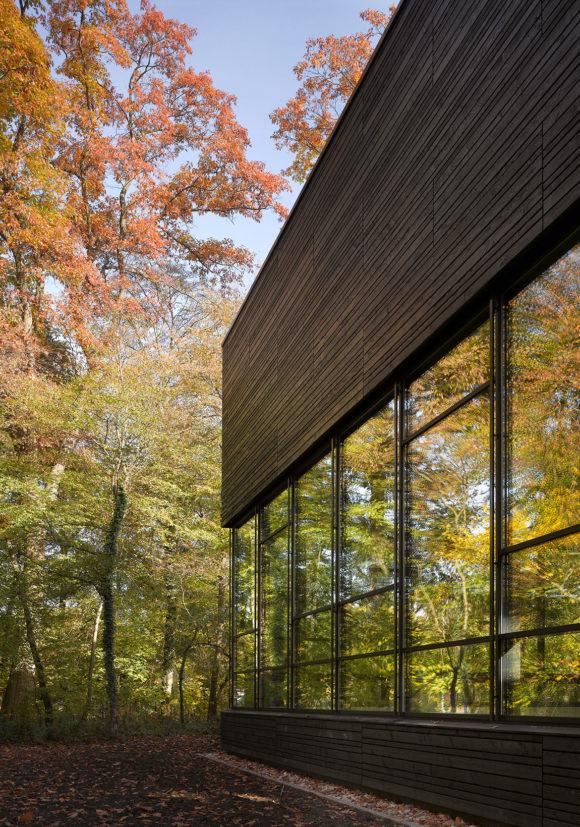 Spiegelung des Waldes in der Glasfassade des Erweiterung des Instituts für Sportwissenschaften des Karlsruher Institus für Technologie in Karlsruhe.