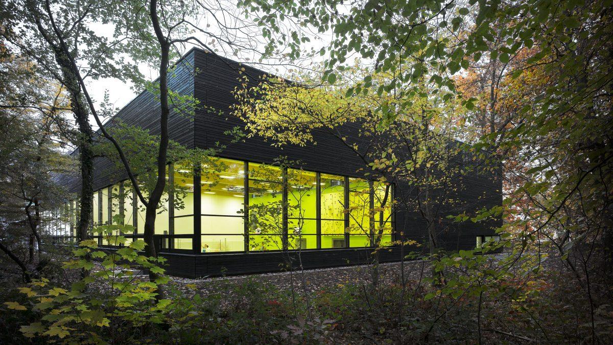 Blick durch den Wald auf die Erweiterung des Instituts für Sportwissenschaften des Karlsruher Institus für Technologie in Karlsruhe.