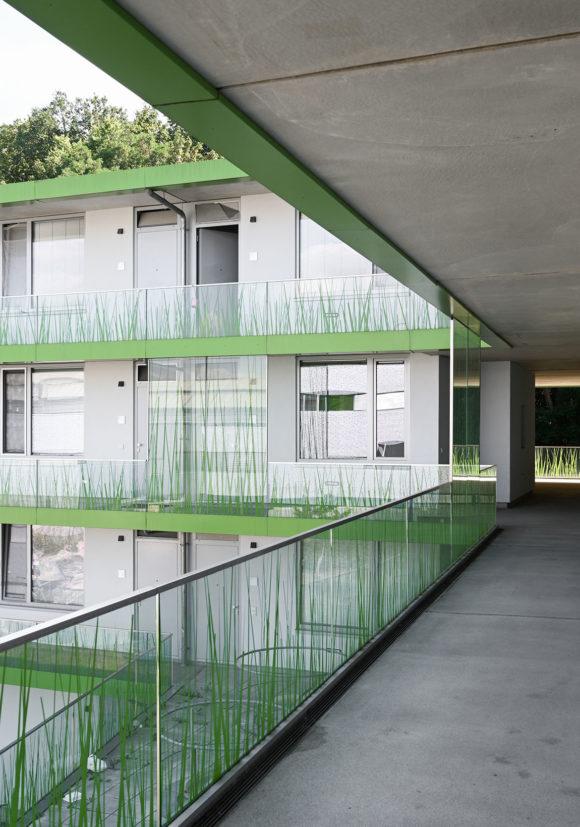 Laubengang des studentischen Wohnens am Campus der Technischen Hochschule Wildau.